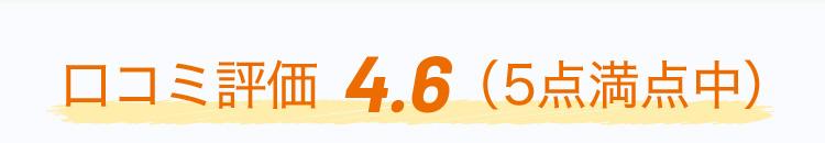 口コミ評価 4.6 (5点満点中)
