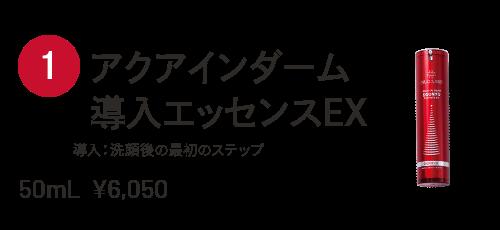アクアインダーム導入エッセンスEX 導入:洗顔後の最初のステップ 50mL ¥6,050