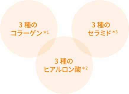 3種のコラーゲン 3種のセラミド 3種のヒアルロン酸